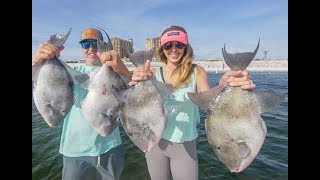 Epic Florida Saltwater Fishing for Triggerfish & Snapper Offshore - Catch and Cook