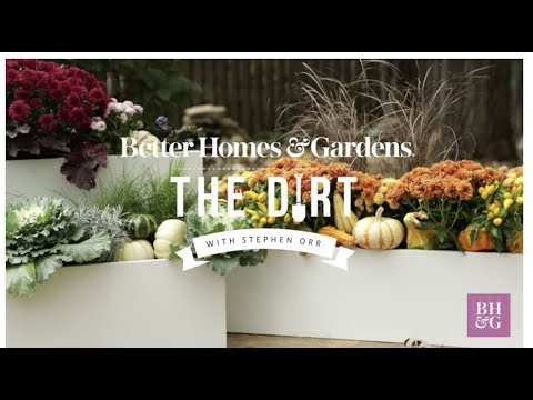 Fall Window Boxes | The Dirt | Better Homes & Gardens