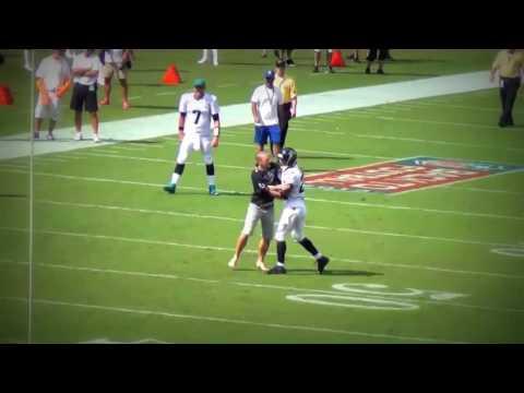 NFL Fans Running Onto Field Compilation