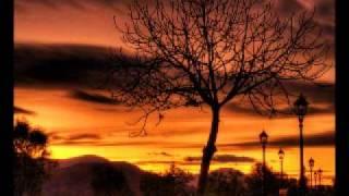 Dreadful Shadows - Dusk