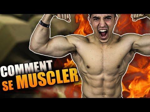 Bolyat les muscles tourne les articulations