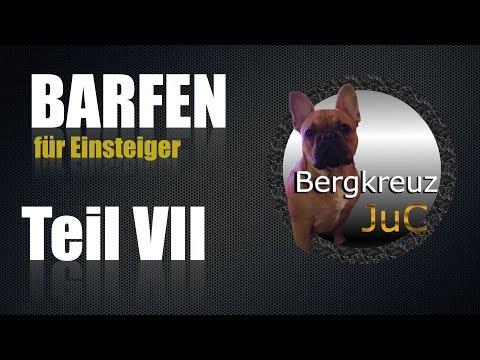 BARFEN / BARF - biologisch artgerechtes rohes Futter für den Hund / Hunde Teil 7 #Barfen