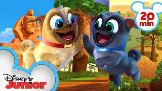 Bingo and Rolly Travel Around Africa! 🌍| Compilation | Puppy Dog Pals | Disney Junior