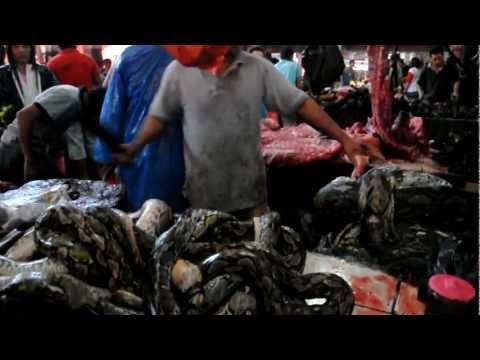 Video Tomohon Market Indonesia
