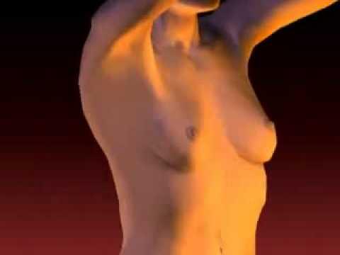Pourquoi la poitrine cest plus cela moins