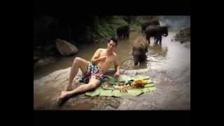 Enjoy these amazing impressions of Thailand