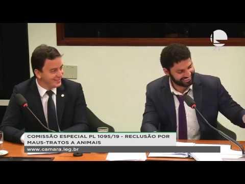 PL 1095/19 - RECLUSÃO POR MAUS-TRATOS A ANIMAIS - Reunião Deliberativa - 21/08/2019 - 15:51
