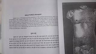MALE TORSO ( Harappa ) FineArts Class 11 Hindi Explanation | CBSE | Ft.YourStudyGuide
