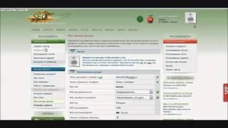 Как зарабатывать новичкам  300 500 рублей в день на Seosprint 2015