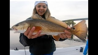 HOW TO CATCH REDFISH in the SPRING - While Catching REDFISH!!
