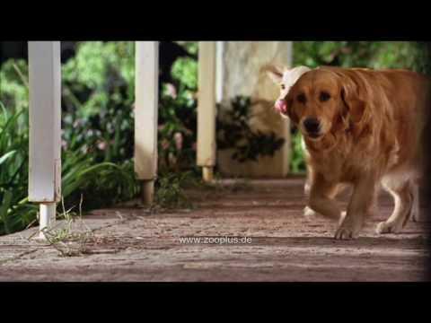 Pedigree Gelenk Aktiv Hunde Kausnack