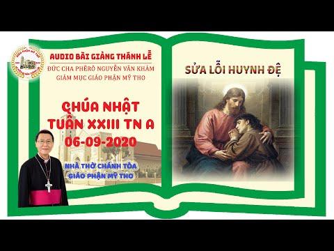 Đức Cha Phêrô suy niệm CN XXIII TN A: SỬA LỖI HUYNH ĐỆ
