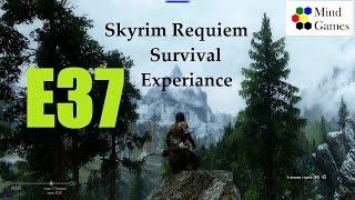 Skyrim Requiem Survival Experiance. Эпизод 37: Типичный Солитьюд.
