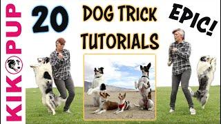 DOG TRICKS - 20 Trick Tutorials!