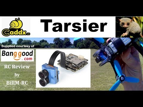 Caddx Tarsier review - Setbacks, Setup, Flight & Camera Tests (Part II)