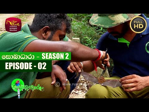 Sobadhara - සොබාධාරා | Season- 02 | Episode 02 | 2018-01-12 | Rupavahini Documentary
