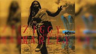 Shalom Salaam - Ziggy Marley | DRAGONFLY