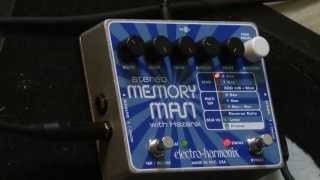 Audio Test #13   Electro Harmonix   Stereo MEMORY MAN With Hazarai   Massimo Varini