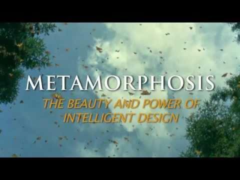Metamorphosis Blu-ray movie- trailer