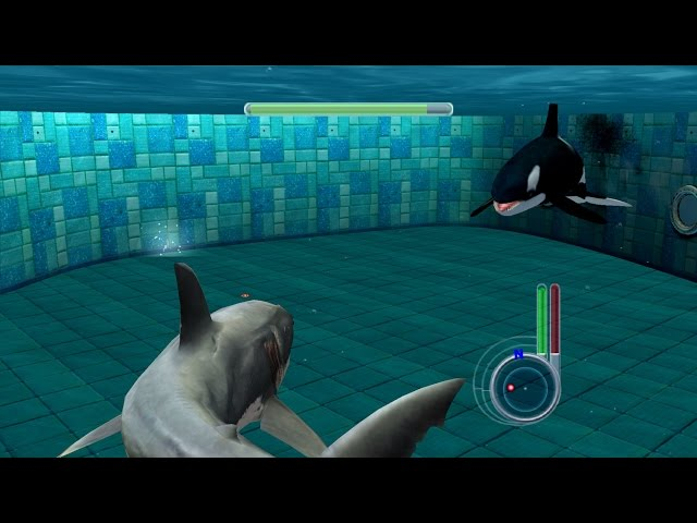 Jaws Unleashed - Great White Shark vs Killer Whale