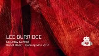 Lee Burridge   Robot Heart   Burning Man 2018.