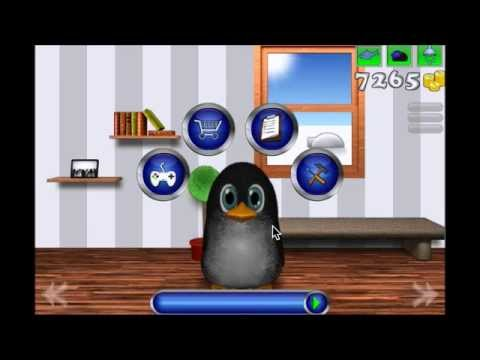Video of Puffel the penguin