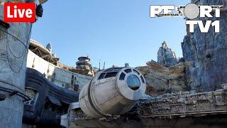 🔴Live: Disney's Hollywood Studios Saturday Night Fun 1080p - Walt Disney World Live Stream