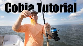 How to Catch Cobia Full Tutorial - Live Bait, Eels, and Bucktails