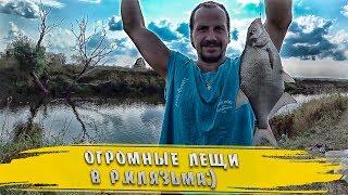 Клев рыбы в подмосковье на неделю орехово зуево