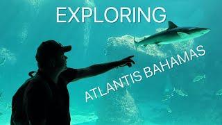 Exploring the Atlantis Bahamas!