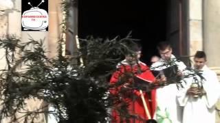 preview picture of video 'ESPARREGUERA TV. El Diumenge de Rams inicia la Setmana Santa d'Esparreguera'