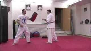 Fighting Techniques Magomed Mitsaev - fast kick mawashi geri