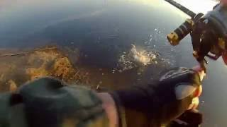 Рыбалка на реке вага архангельская область