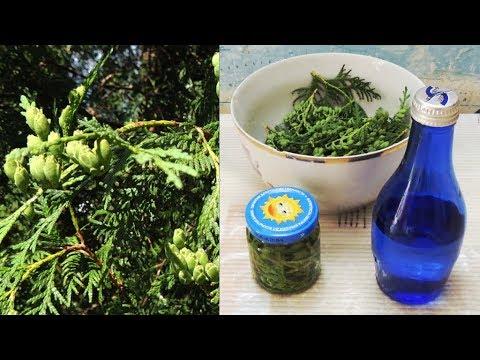Vásároljon gyógynövényeket prosztatitisekkel