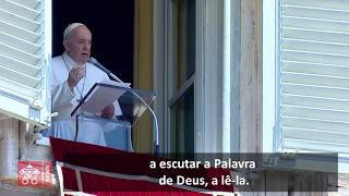 "Papa Francisco: ""Podemos tornar-nos terreno fértil para a Palavra de Deus"""