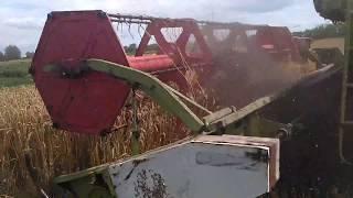 CLAAS Dominator 106/уборка пшениці 2017