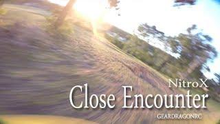 Close Encounter with Kamikaze bird (NitroX Drone FPV)