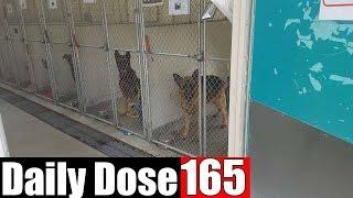 #DailyDose Ep.165 - PUPPY HUNTING+MAV PUNISHMENT! | #G1GB