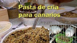 Como Hacer Pasta De Cria Para Canarios,  Por Pedro Mazuelas