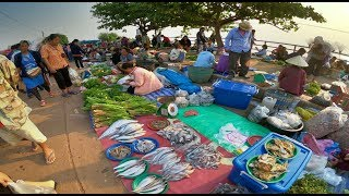 ตลาดนัดไทย-ลาว อ.ธาตุพนม สุดยอดของป่า แมงแคง จักจั่น ไข่มดแดง