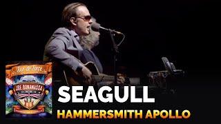 Joe Bonamassa - Seagull - Live at the Hammersmith Apollo