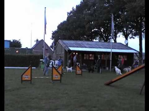 Hondentraining in Cuijk - Els en Marco