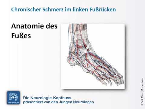 ALMAG Behandlung von Osteoarthritis