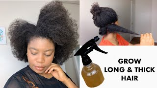 Extreme Fenugreek & Aloe Vera Leave In Conditioner For Fast Hair Growth | Grow Long & Thick Hair