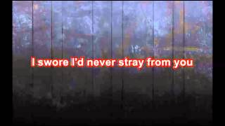 The Exies - Stray (with lyrics)