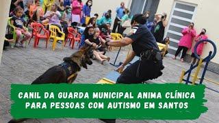 Canil da Guarda Municipal anima clínica para pessoas com autismo em Santos