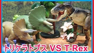 アニア 恐竜 アニメ アニマルアドベンチャー「トリケラトプス VS ティラノサウルス」 Dinosaur Fight