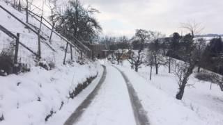 スイス発 『Haldihof』オーガニックファームまでの道のり【スイス情報.com】