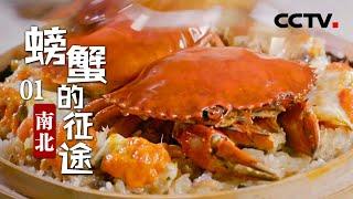 《螃蟹的征途》第一集 南北 | CCTV纪录