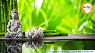 Nhạc Thiền Tịnh Tâm - Meditation Music Buddha - Nhạc Thiền Chọn Lọc Hay Nhất